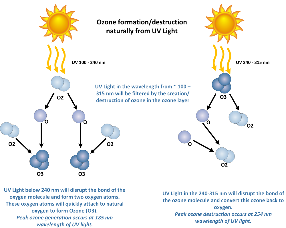 ozone production from UV light in the ozone layer