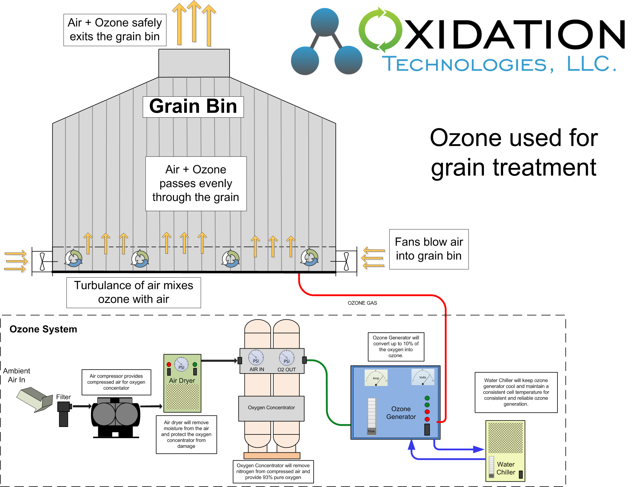Ozone for micotoxin reduction in grain